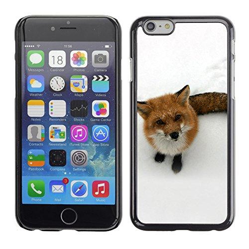 "Premio Sottile Slim Cassa Custodia Case Cover Shell // V00003329 renard drôle // Apple iPhone 6 6S 6G 4.7"""
