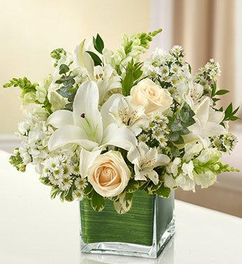 Amazon healing tears all white medium by 1 800 flowers healing tears all white medium by 1 800 flowers mightylinksfo