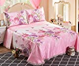 BEIRU Summer Mat Three-piece 1.5/1.8m Bed Sheet Can Be Washed Folding Ice Silk Seat Air Conditioning Soft Seat Bed Skirt Mat ZXCV (Color : 4, Size : 250250cm)
