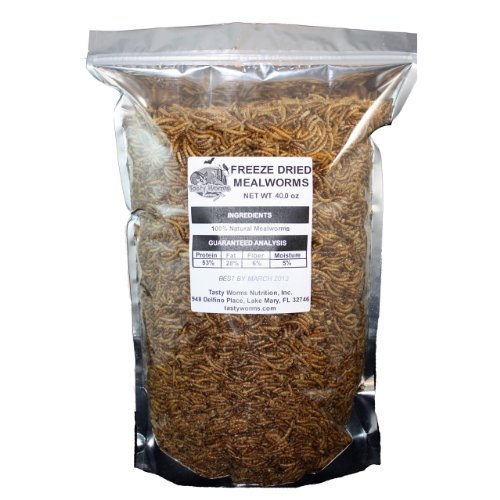 2.5 Lbs Tasty Worms Freeze Dried Mealworms Approximately 40,000 Mealworms, My Pet Supplies