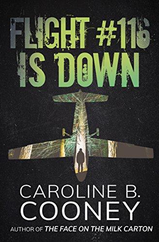 Flight #116 Is Down (Point)