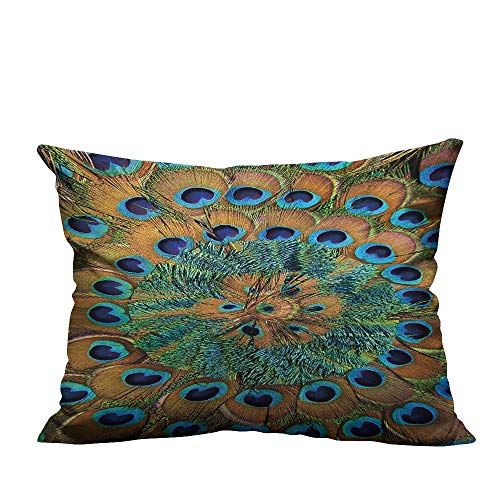 YouXianHome Home DecorCushion Covers Close up of Circular Peacock Feather Pattern. Comfortable and Breathable(Double-Sided Printing) 11x19.5 inch