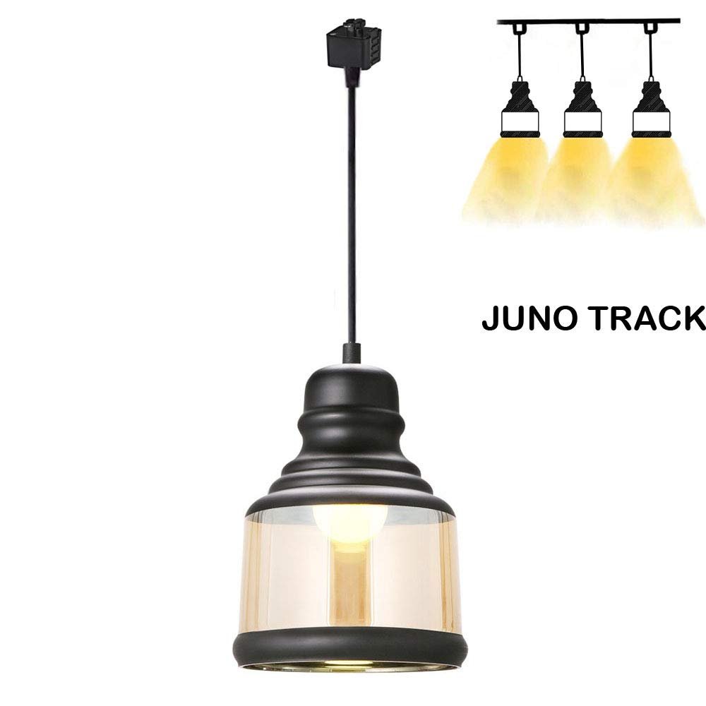Kiven Juno Track Lighting Pendant Light,with 1 Light Painted Finish Traditional Glass Shade Jar,1Light