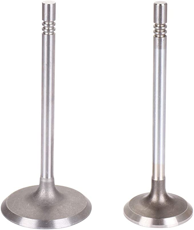 ECCPP Replacement for Engine Intake Exhaust Valves Kit for 1999-2007 Dodge Chrysler Mitsubishi 4.7L V8 SOHC 16V 16Pcs IV5047 Intake Valve x8 x8 EV5047