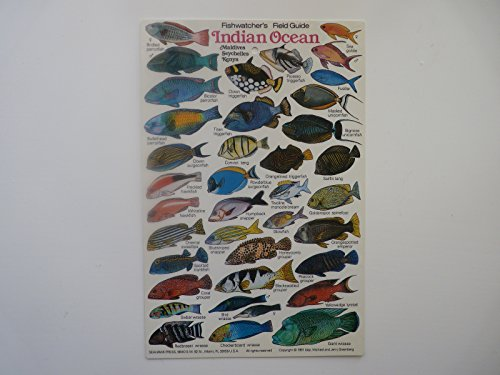 Indian Ocean Fishwatcher's Field Guide (Indian Seahawk)