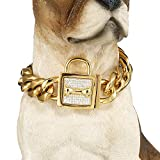 W/W Lifetime Badass Dog Collar for Large Dogs, Heavy Duty Gold Choke Collars for Pitbull Mastiff German Shepherd