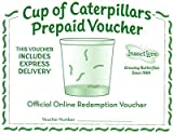 Insect Lore Certificate for Cup of Caterpillars