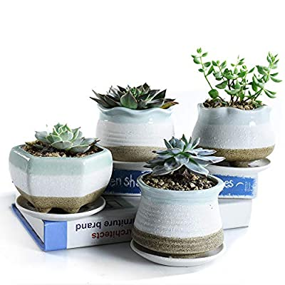 SUN-E 3.54 Inch Snow Frosted Surface Ceramic Pot Serial Set Full Set Succulent Plant Pot Cactus Plant Pot Flower Pot Container Planter with Display Tray Drainage 4 in Set : Garden & Outdoor