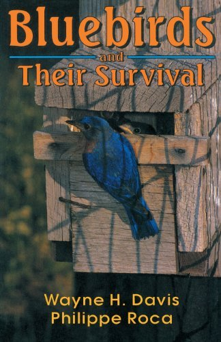 (Bluebirds And Their Survival)