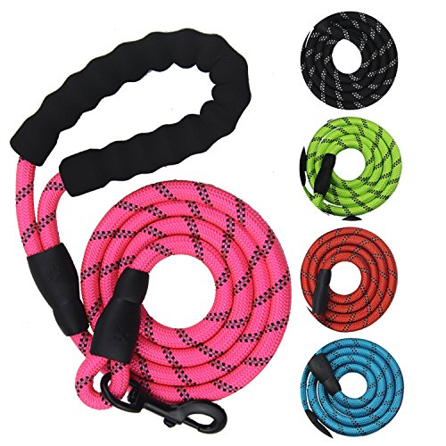 Heavy Duty Nylon Dog Leash - Sturdy Pet Mountain Climbing Rope Reflective Dog Lead with Comfortable Padded Handle - 5 FT Long Leashes for Night Safety - Perfect for Medium (Gentle Leader Treats)
