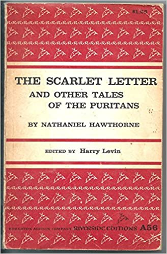 puritan beliefs in the scarlet letter