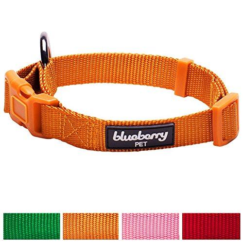 X-small Adjustable Dog Collar - 9