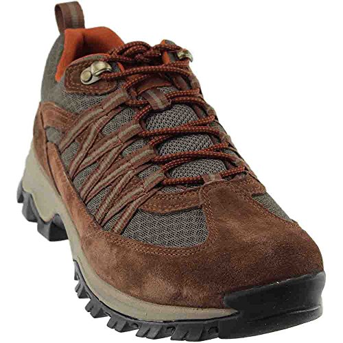 Timberland Mens MT. Maddsen Lite Low Hiking Boot, Dark Brown, Size 10