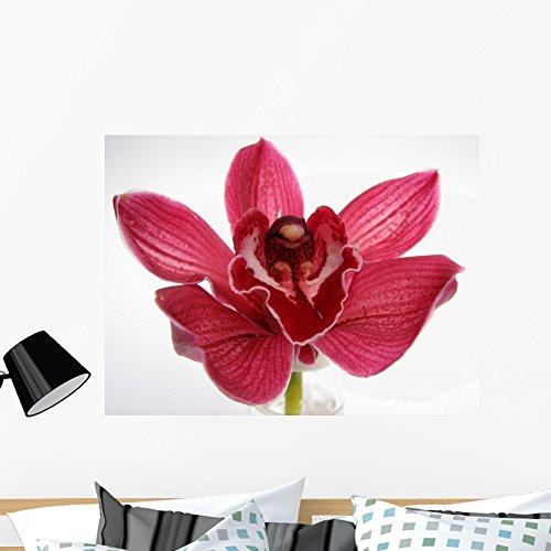 Wallmonkeys Orchid Wall Mural Peel Stick Floral Graphic (36 in W x 27 in H) WM104672 -