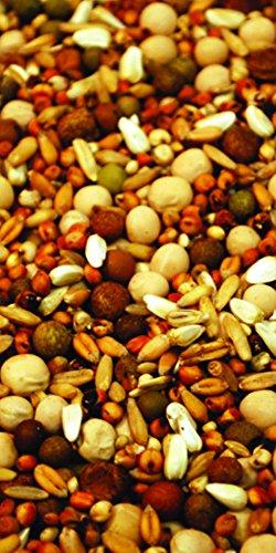 Purgain Breeder/Conditioner 16% no corn-50 lb bag ()