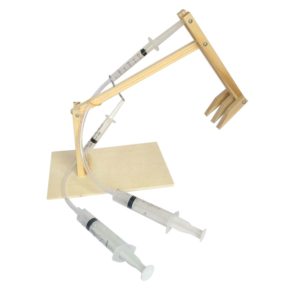 YeahiBaby Giocattoli educativi di piccola invenzione di giocattolo del giocattolo di esperimento scientifico dei bambini del modello dell'Assemblea di scavo di DIY