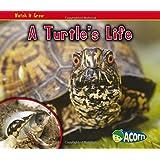 A Turtle's Life (Watch It Grow)