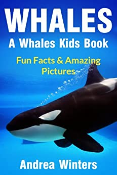 Whales for Kids - Learn Fun Facts About The Different Type of ...