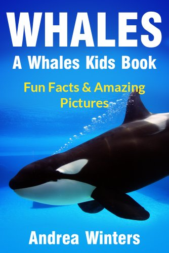 Whales for Kids - Learn Fun Facts About The Different Type of Whale Species In This Whale Book for Kids (Whale Facts for Kids)