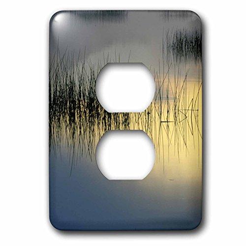 3dRose LLC lsp_93032_6 New York, Adirondacks, Moose Lake, Reeds, Sunrise - Us33 Bja0003 - Jaynes Gallery 2 Plug Outlet Cover Contemplation Moose