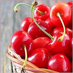 季節の果物