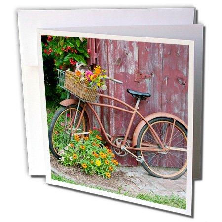 3dRose - Tarjeta de felicitación para bicicleta vieja con flores en cesta, junto a la caseta vieja de jardín, 15,2 x 15,2...