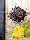 Door Knob (model 2)(hand painted), Cast iron door knob, door knob, iron door knob, cast iron.
