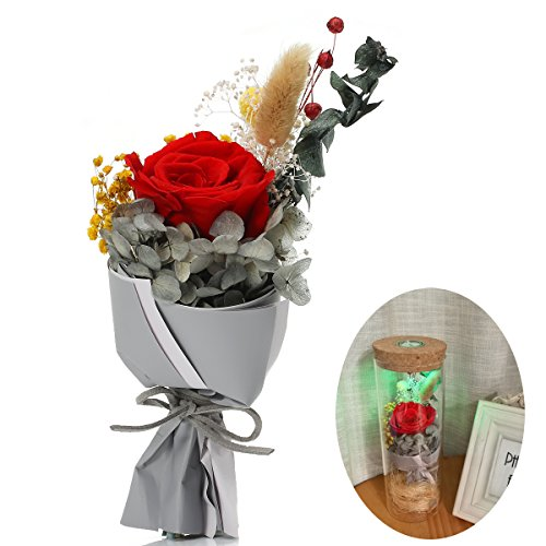 Love Fresh Flowers (Forever Flowers BABALI RGB LED Lights Decoration Real Natural Fresh Handmade Never Withered Rose Preserved Rose In Glass Jar, Gift for Valentine Mother's Day Wedding Birthday Anniversary (Red Rose))