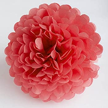 Amazon x sunshine 5pcs 8inch 10inch diy tissue paper flower x sunshine 5pcs 8inch 10inch diy tissue paper flower balls outdoor decoration baby girls room mightylinksfo