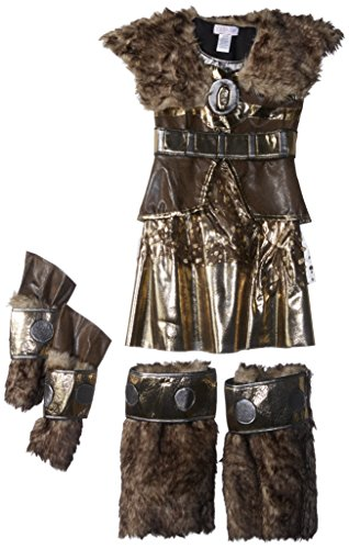 Warrior Princess Costume Size Small (Princess Paradise Hildagaard Warrior Costume, Tween Small)