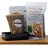 Cat Grass Grow Kit. Easily Grow 3 Trays of Fresh, Organic superfood for Your cat on Your windowsill in About 9 Days.