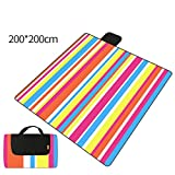 DADAO Picnic Mat Waterproof Washable,Perfect for Hiking, Camping, Music Festivals, Outdoor Sporting Events, Picnics and More!,4,200x200cm