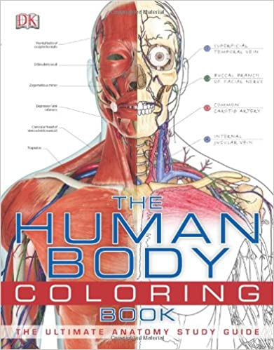 amazoncom the human body coloring book 8589097777771 dk publishing books - Human Body Coloring Book