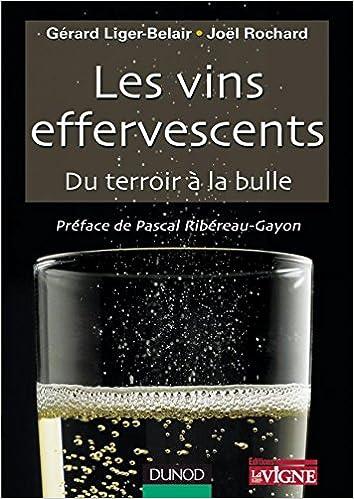 Amazon Fr Les Vins Effervescents Du Terroir A La Bulle