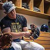 EASTON PROFESSIONAL RESERVE Baseball Glove   Alex