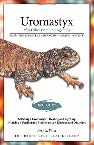 Download Uromastyx: Plus Other Common Agamids (Advanced Vivarium Systems) ebook