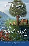 When the Bluebonnets Come, John Dwyer, 0976822415