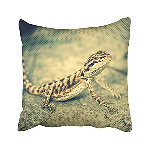 (SPXUBZ Lizard Double Sided Bearded Dragon Lizard Pillow Cotton Polyesterwith Hidden Zipper Decorative Home Decor Square Indoor/Outdoor Throw Pillowcase Size: 18X18 Inch(Two Sides) )