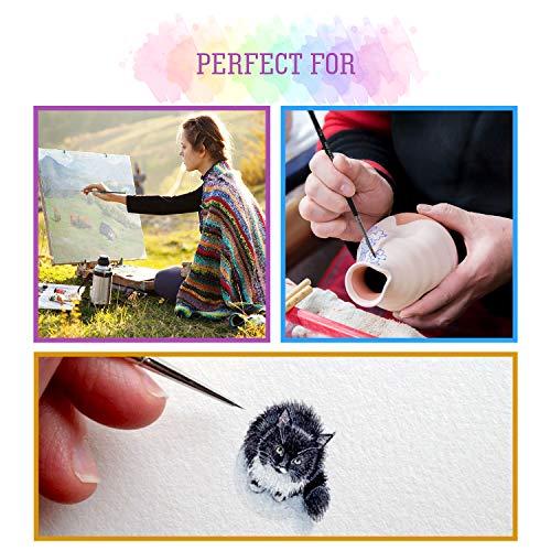 Professional Detail Paint Brush Set - 15 Easy Washable Paint Brushes - Fine Detailing for Acrylics, Oil, Watercolor & More - Matte Black Wooden Handles, Canvas Case and Premium Nylon Hair (15)
