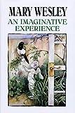 An Imaginative Experience