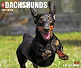Just Dachshunds 2018 Calendar