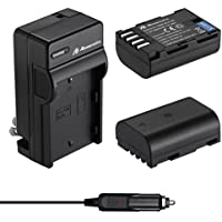Powerextra 2 Pack High Capacity Replacement Battery and Charger for Panasonic DMW-BLF19, DMW-BLF19E, DMW-BLF19PP and Panasonic Lumix DC-GH5, DMC-GH3, DMC-GH3K, DMC-GH4, DMC-GH4K Digital Camera