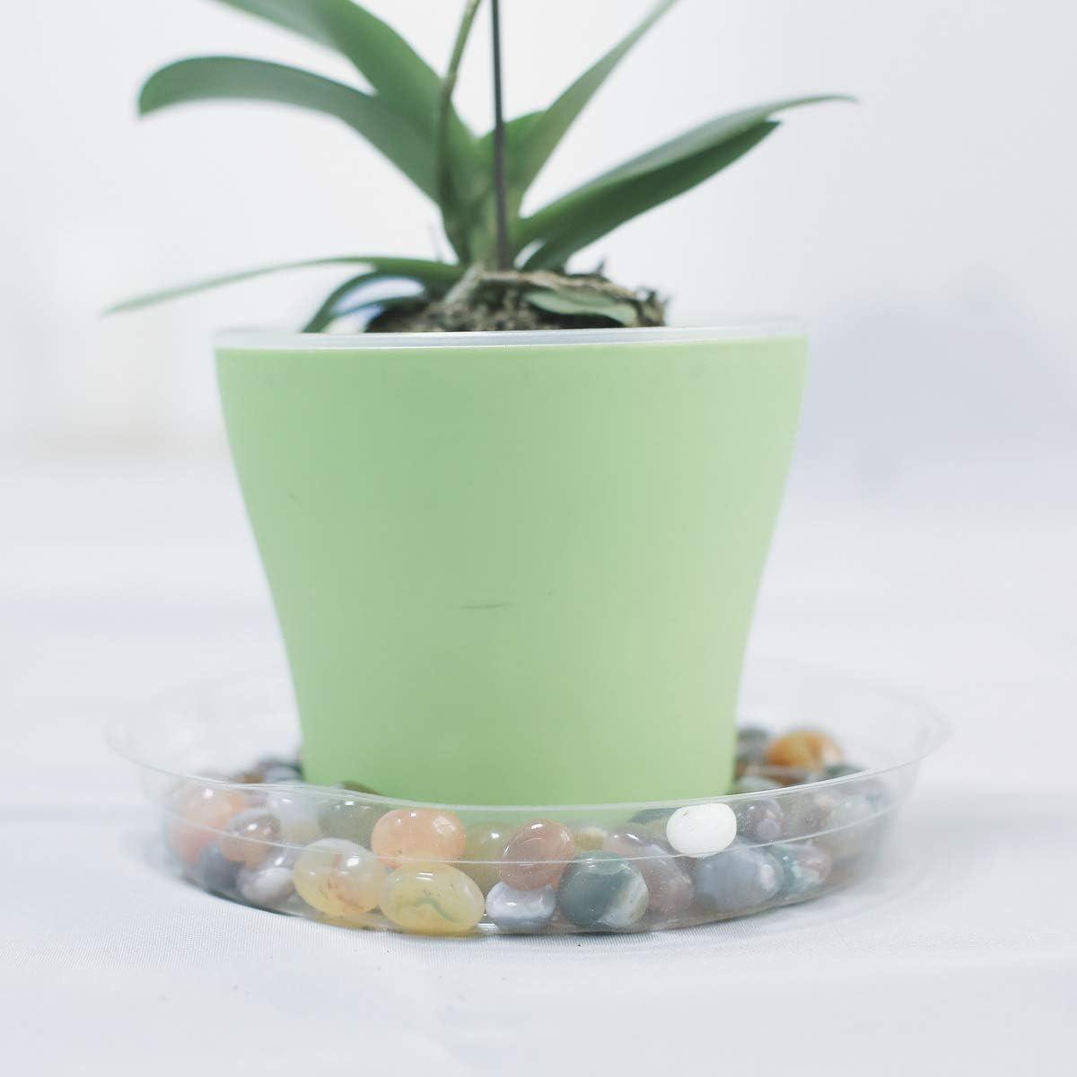 Truedays Clear Plastic Plant Saucers