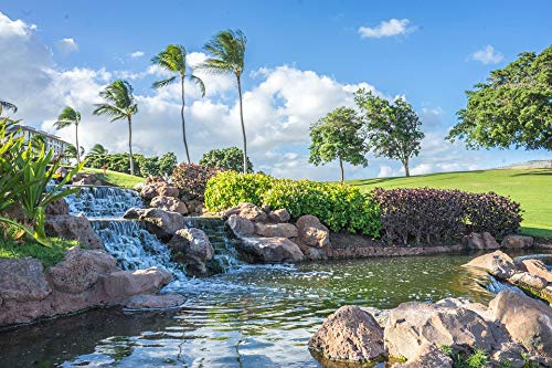 Home Comforts Laminated Poster Hawaii Waterfall Pond Ko Olina Rocks Oahu Vivid Imagery Poster Print 24 x 36