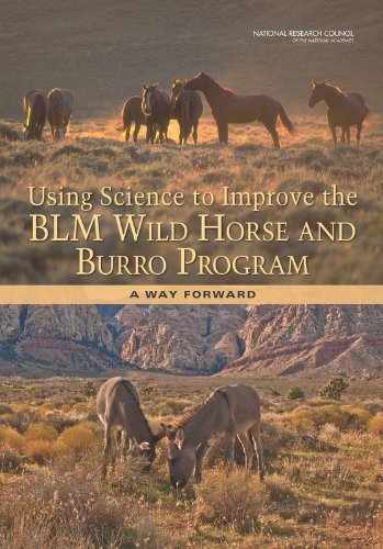Using Science To Improve The Blm Wild Horse And Burro Program  A Way Forward