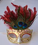 Peacock Feathered Mask Masquerade Venetian Fancy Dress Silver Gold Red
