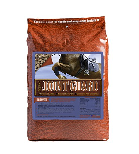 Equine-Joint-Guard-Joint-Supplement-for-Horses