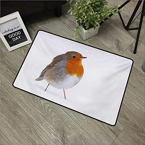 HRoomDecor Bird,All Weather Door Mats Cute European Robin Standing in Snow Songbird Beak and Feathers Winter Season W 16
