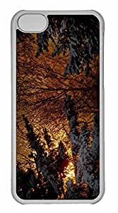 iPhone 5C Case, Personalized Custom Winter Night Lights for iPhone 5C PC Clear Case