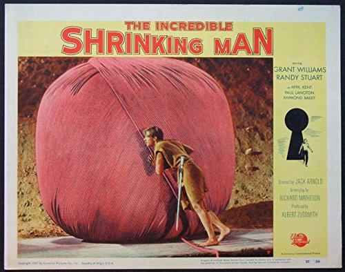 INCREDIBLE SHRINKING MAN JACK ARNOLD SCIENCE FICTION 1957 LOBBY CARD #7